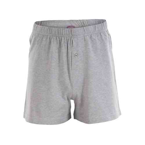 Living Crafts Boxershorts (grey)